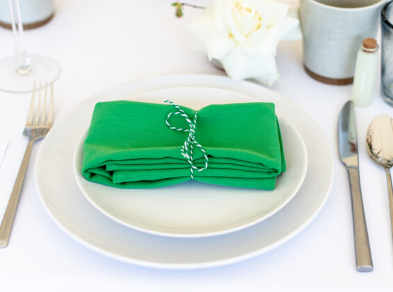 Mint Green napkin on Arctic White table cloth