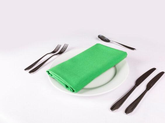Mint Green Napkin