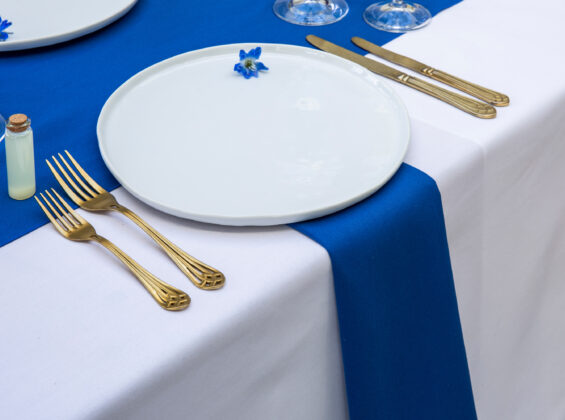 Royal Blue Napkin and Table Runner