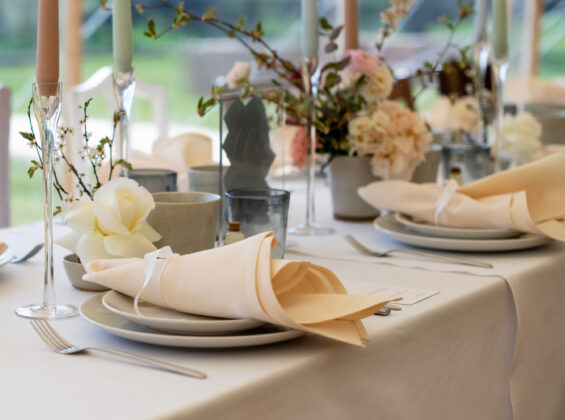 Two Natural Cream napkins on a Arctic White table cloths