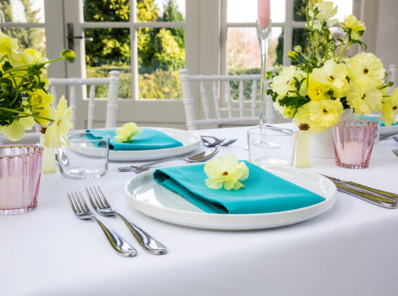 Two Turquoise Sea Napkins