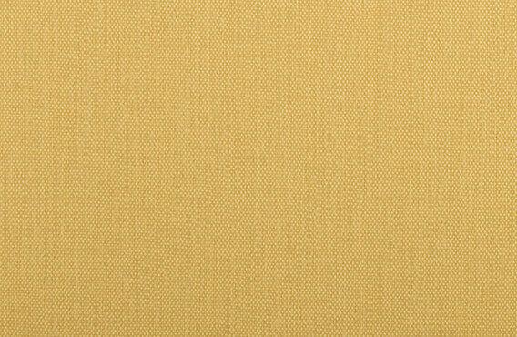 Cornfield Gold